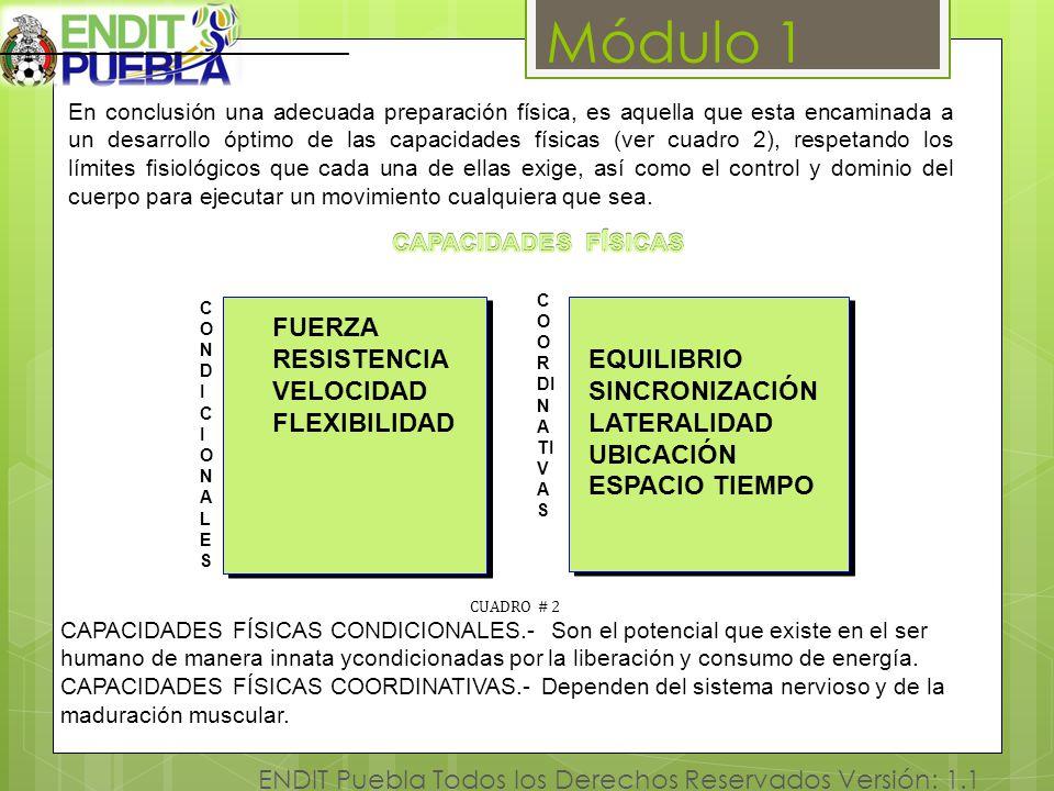 Módulo 1 RESISTENCIA EQUILIBRIO VELOCIDAD SINCRONIZACIÓN