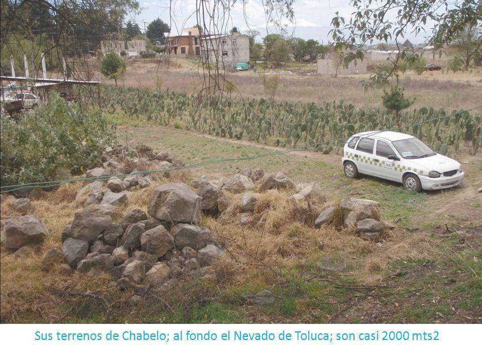 Sus terrenos de Chabelo; al fondo el Nevado de Toluca; son casi 2000 mts2