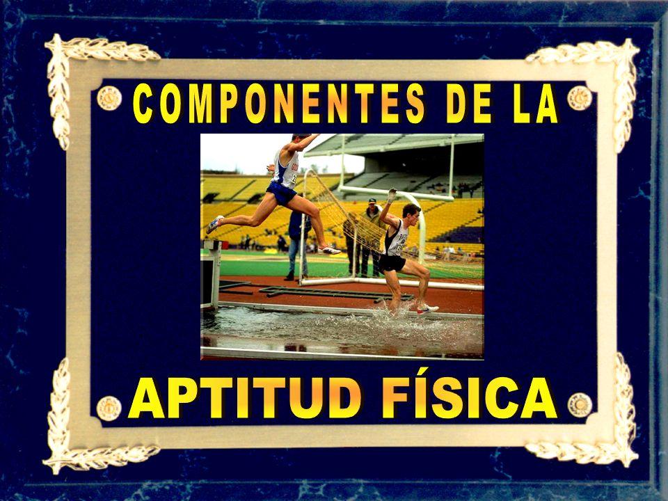 COMPONENTES DE LA APTITUD FÍSICA