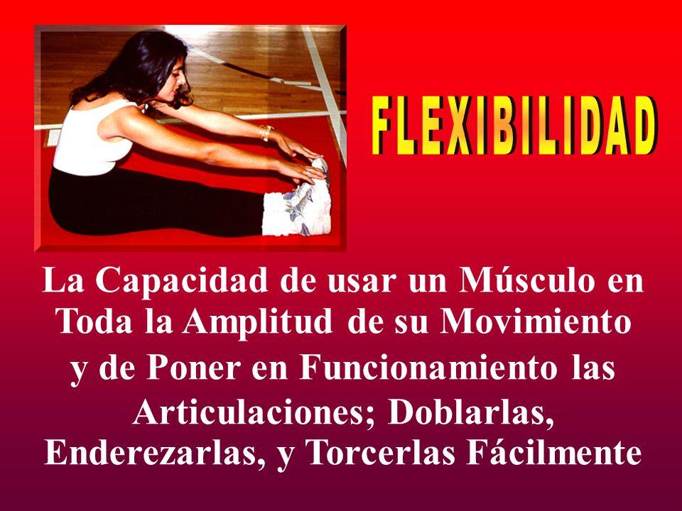 FLEXIBILIDAD La Capacidad de usar un Músculo en