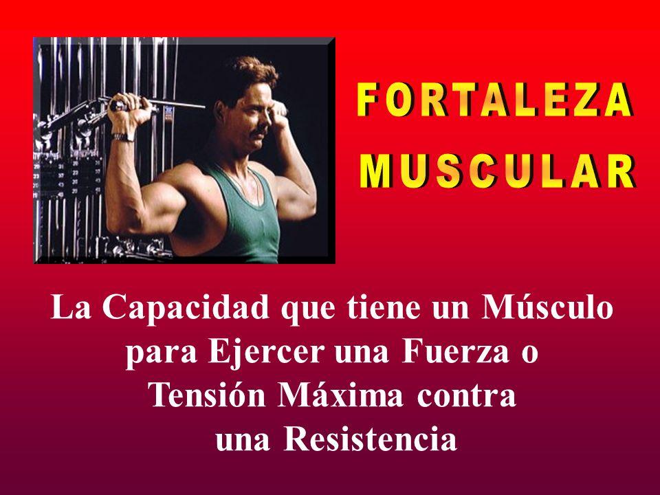 La Capacidad que tiene un Músculo para Ejercer una Fuerza o