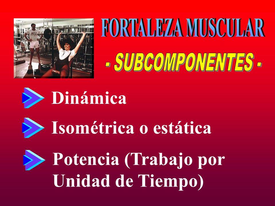 Dinámica Isométrica o estática Potencia (Trabajo por Unidad de Tiempo)