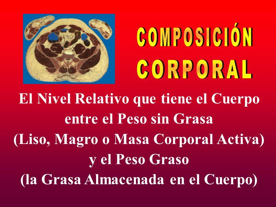 COMPOSICIÓN CORPORAL El Nivel Relativo que tiene el Cuerpo