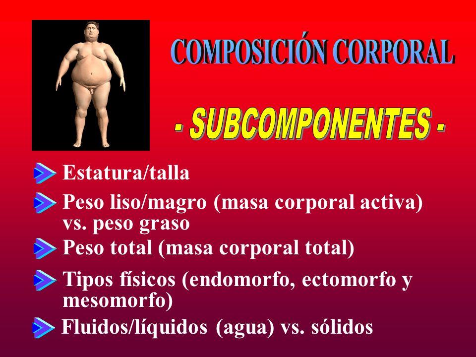 COMPOSICIÓN CORPORAL - SUBCOMPONENTES - Estatura/talla
