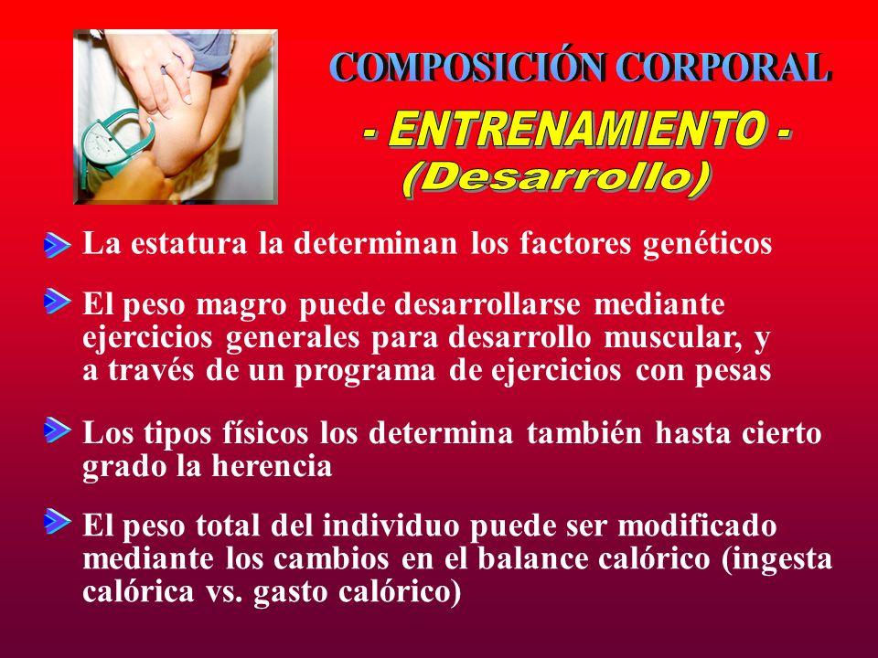 COMPOSICIÓN CORPORAL - ENTRENAMIENTO - (Desarrollo)