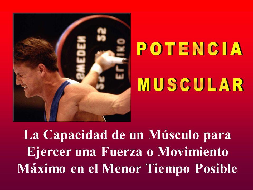 POTENCIA MUSCULAR La Capacidad de un Músculo para