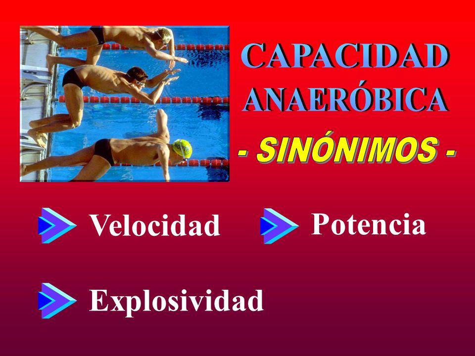 CAPACIDAD ANAERÓBICA - SINÓNIMOS - Velocidad Potencia Explosividad