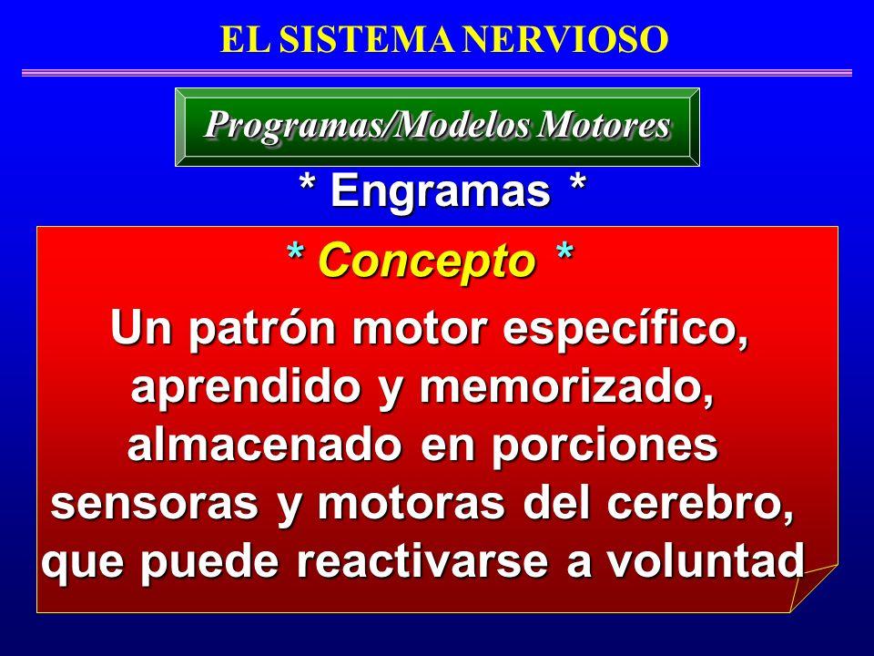 Programas/Modelos Motores