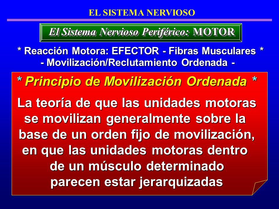 * Principio de Movilización Ordenada *