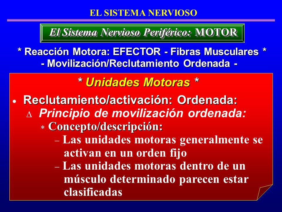 Reclutamiento/activación: Ordenada: