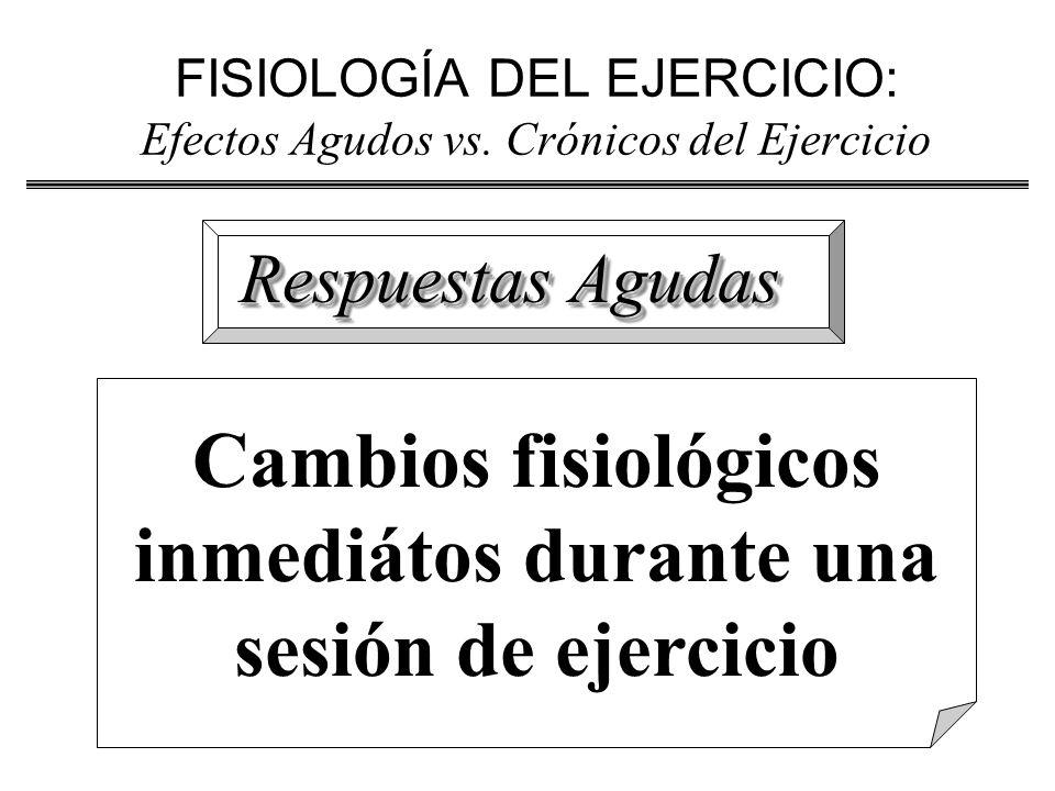 FISIOLOGÍA DEL EJERCICIO: Efectos Agudos vs. Crónicos del Ejercicio