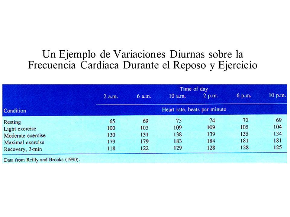 Un Ejemplo de Variaciones Diurnas sobre la Frecuencia Cardíaca Durante el Reposo y Ejercicio