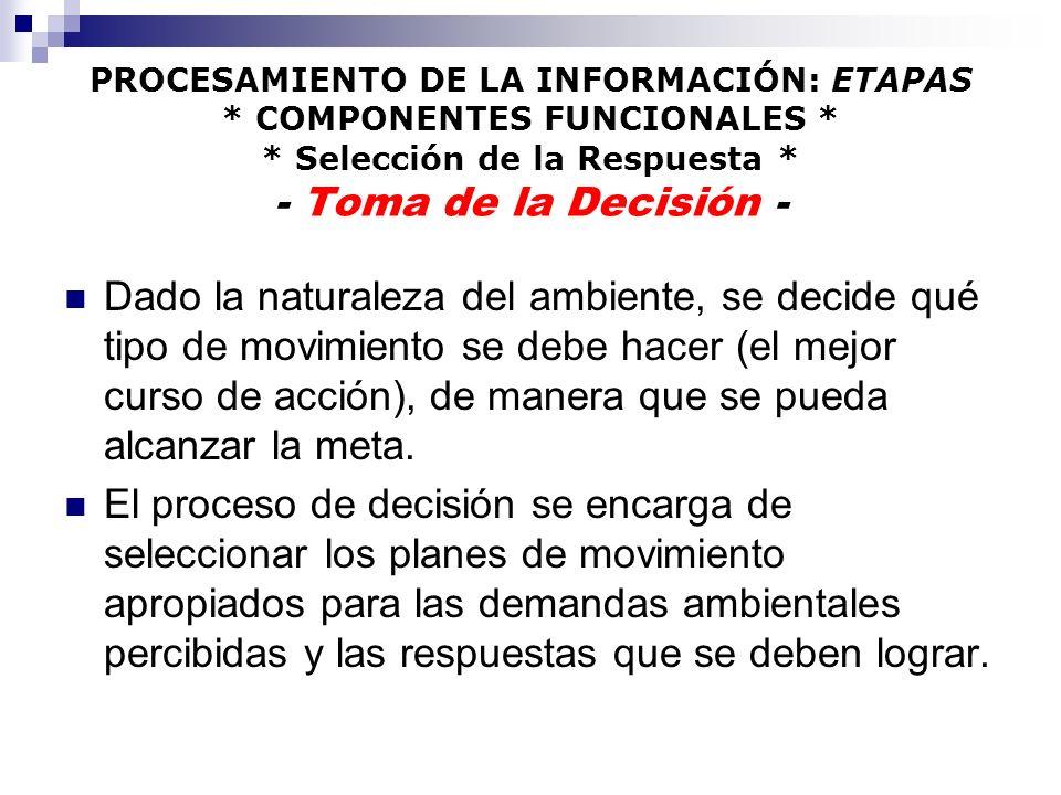PROCESAMIENTO DE LA INFORMACIÓN: ETAPAS. COMPONENTES FUNCIONALES