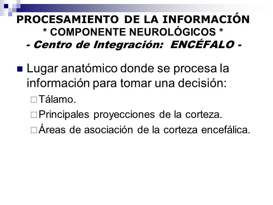 PROCESAMIENTO DE LA INFORMACIÓN. COMPONENTE NEUROLÓGICOS