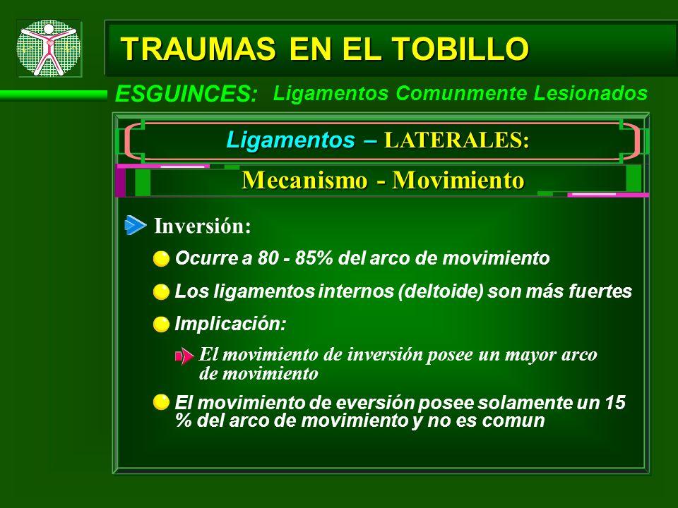 Ligamentos – LATERALES: Mecanismo - Movimiento