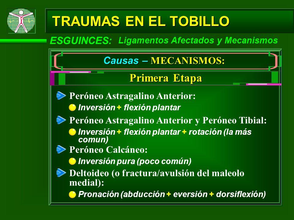 TRAUMAS EN EL TOBILLO Primera Etapa ESGUINCES: Causas – MECANISMOS: