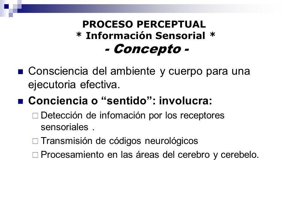 PROCESO PERCEPTUAL * Información Sensorial * - Concepto -