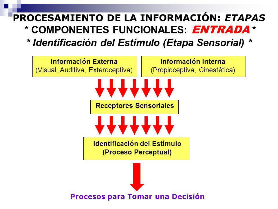 Receptores Sensoriales Identificación del Estímulo