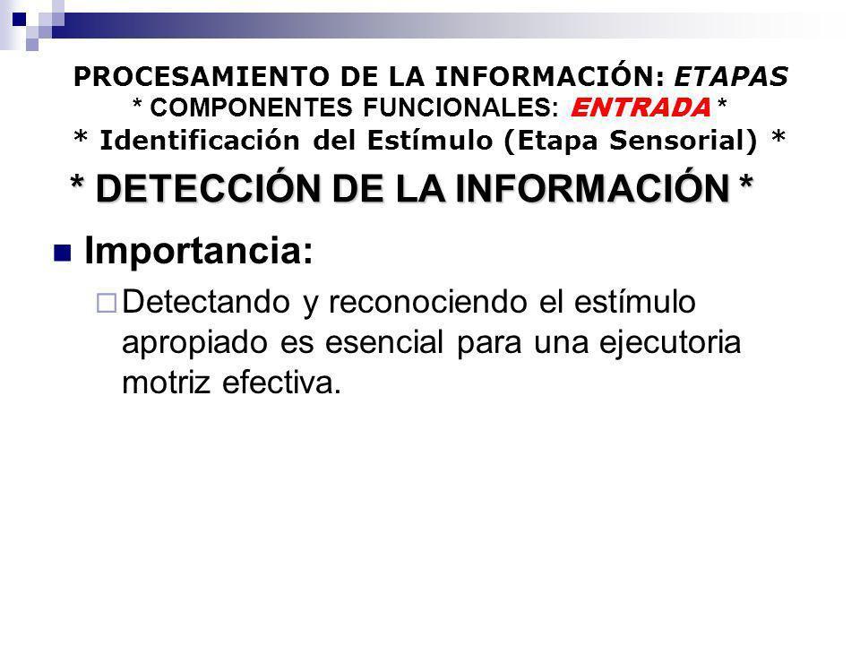 * DETECCIÓN DE LA INFORMACIÓN *