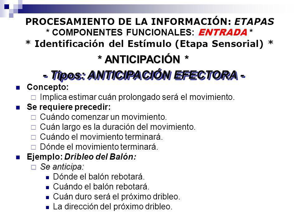 - Tipos: ANTICIPACIÓN EFECTORA -
