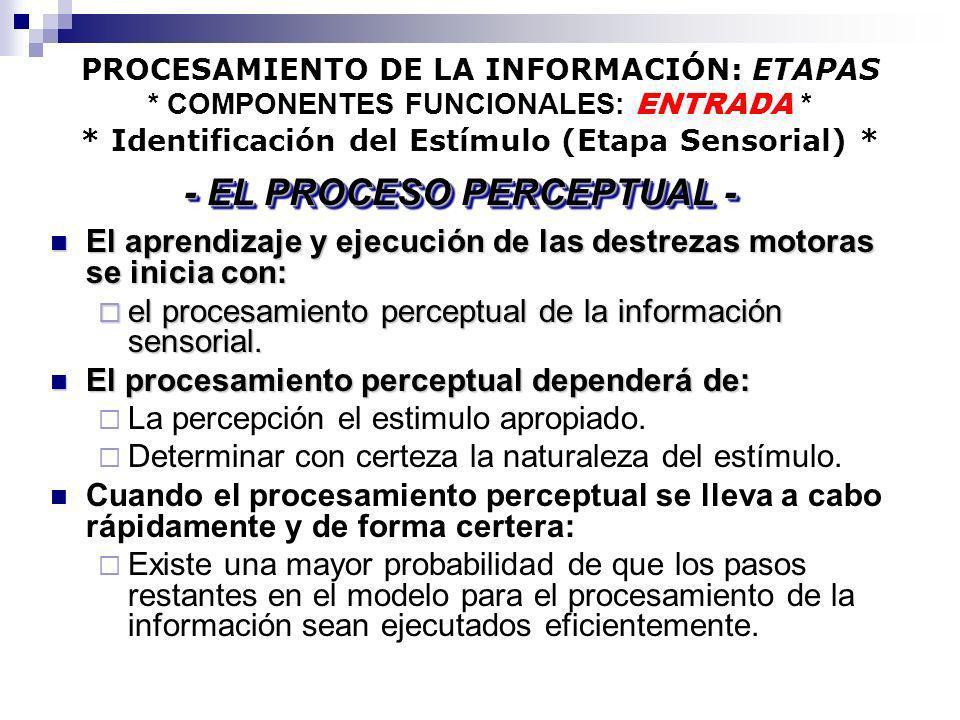 - EL PROCESO PERCEPTUAL -