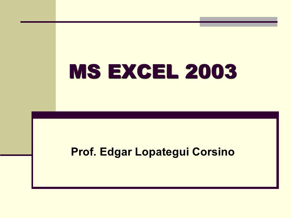 Prof. Edgar Lopategui Corsino
