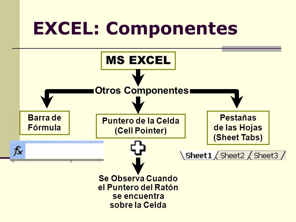 EXCEL: Componentes MS EXCEL Otros Componentes Barra de Fórmula