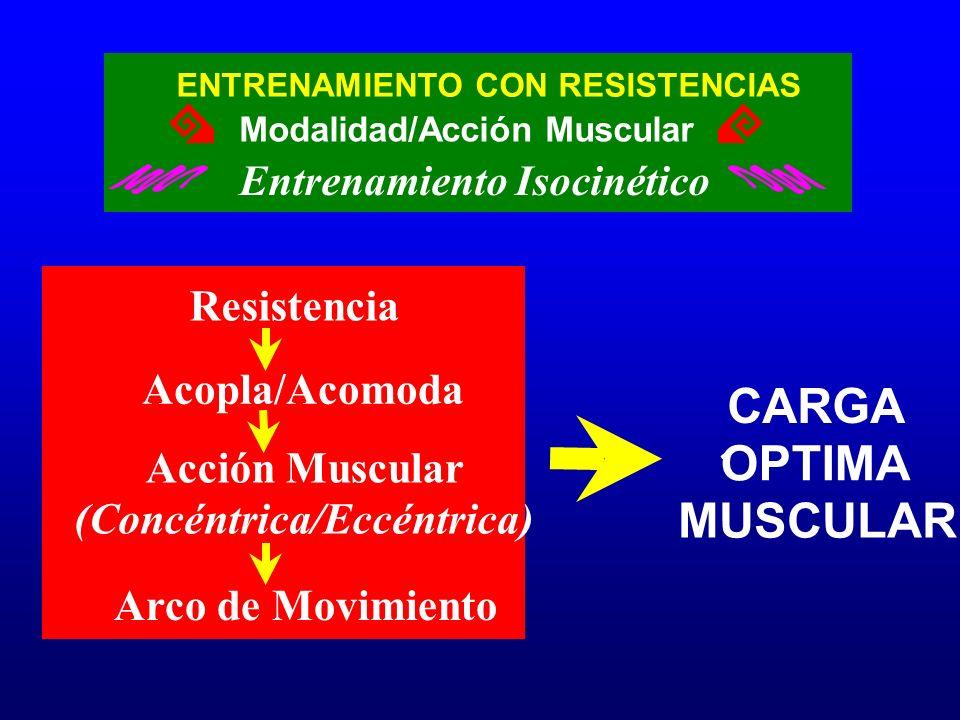 CARGA OPTIMA MUSCULAR Resistencia Acopla/Acomoda Acción Muscular