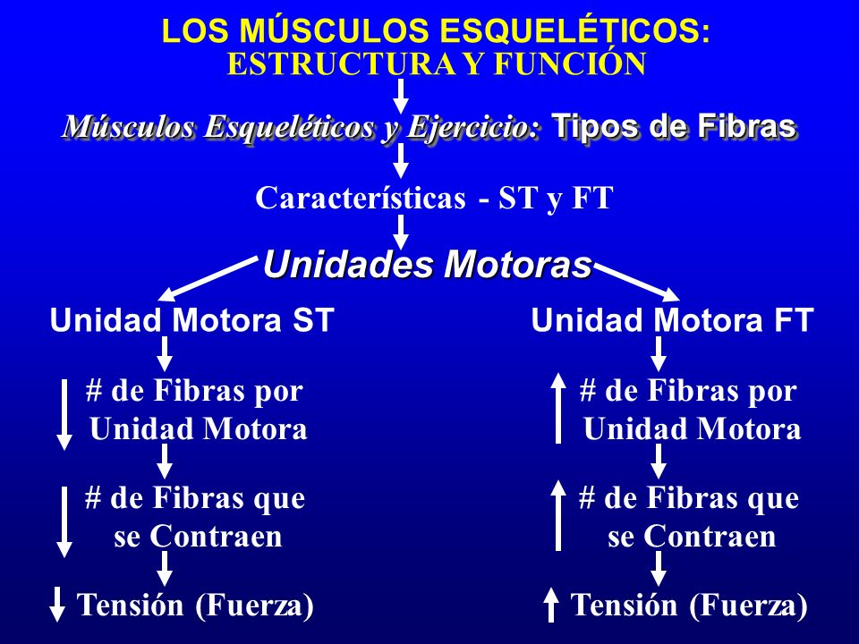 Características - ST y FT