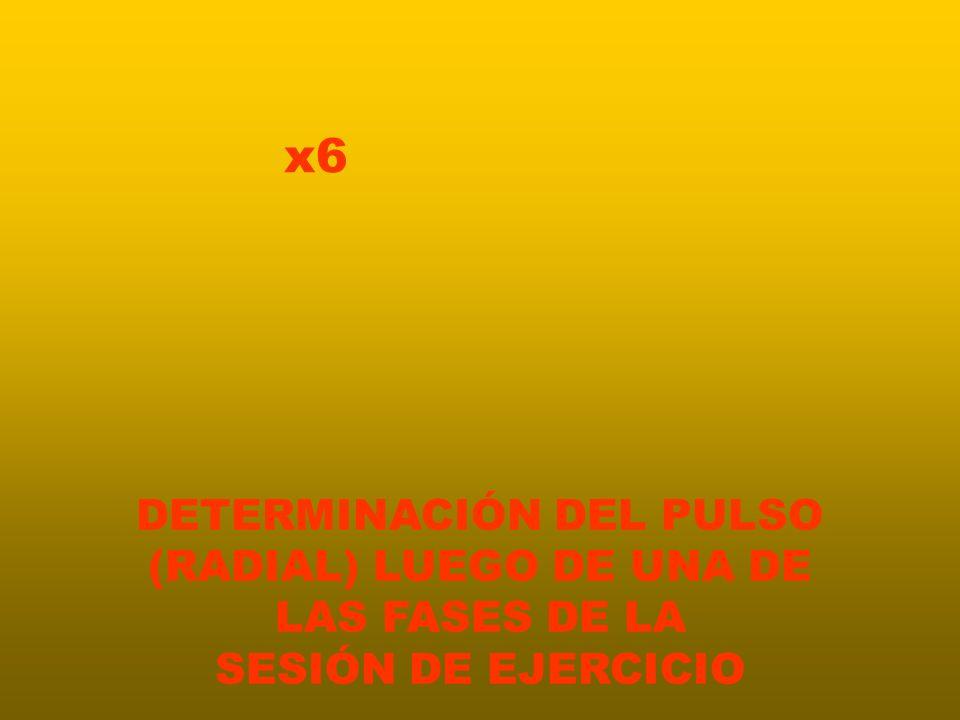 x6 DETERMINACIÓN DEL PULSO (RADIAL) LUEGO DE UNA DE LAS FASES DE LA SESIÓN DE EJERCICIO