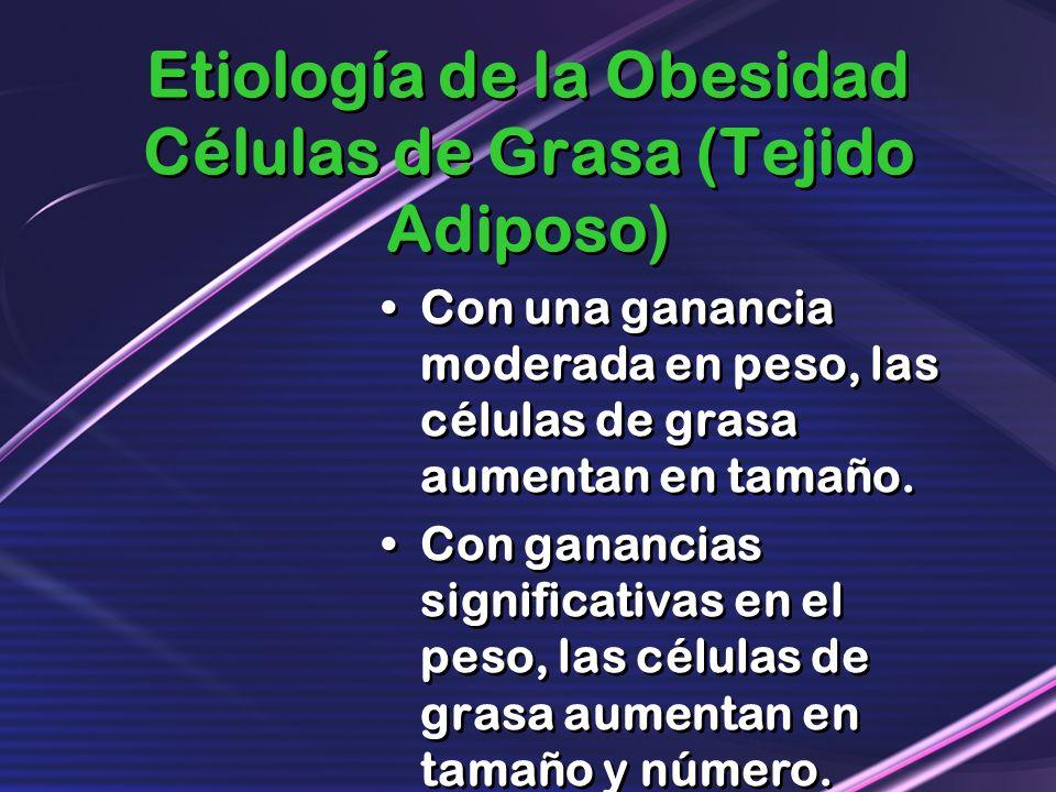 Etiología de la Obesidad Células de Grasa (Tejido Adiposo)