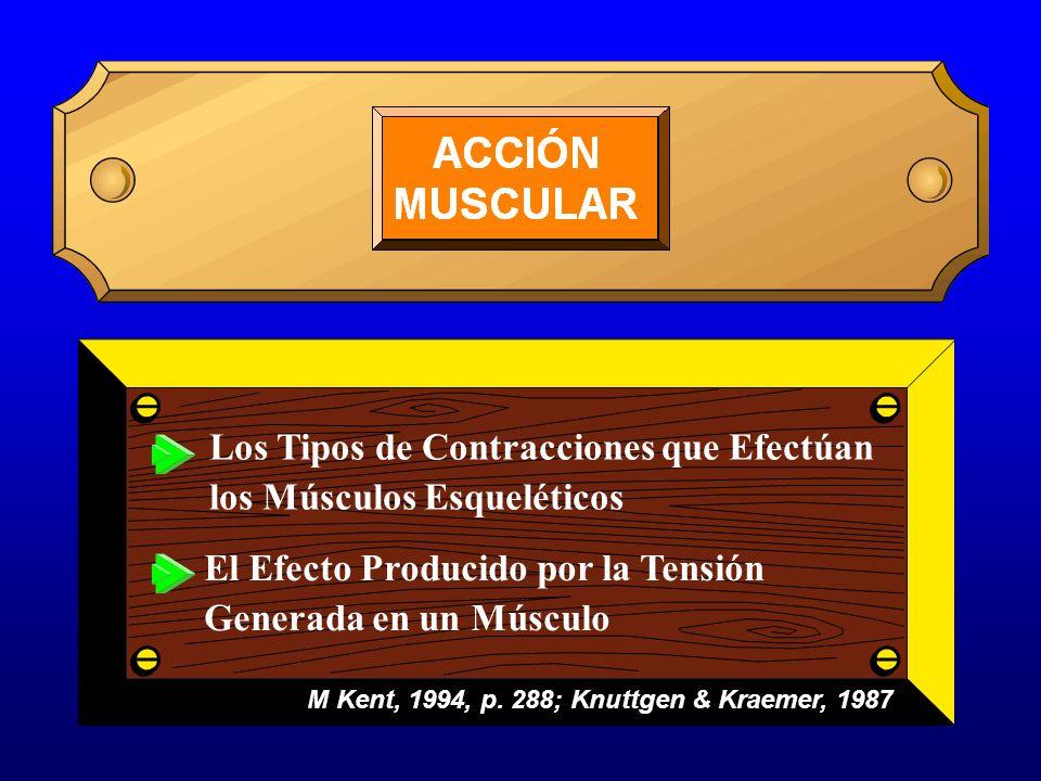 M Kent, 1994, p. 288; Knuttgen & Kraemer, 1987