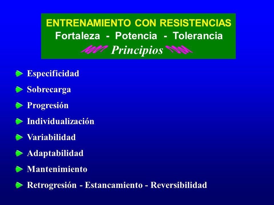Principios Fortaleza - Potencia - Tolerancia