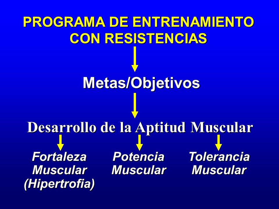 PROGRAMA DE ENTRENAMIENTO Desarrollo de la Aptitud Muscular