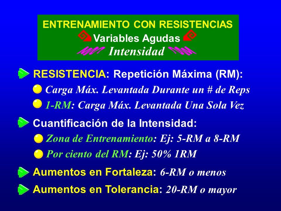 Intensidad RESISTENCIA: Repetición Máxima (RM):