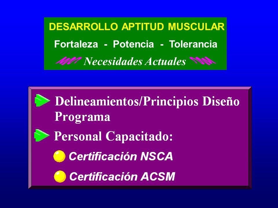 Necesidades Actuales DESARROLLO APTITUD MUSCULAR