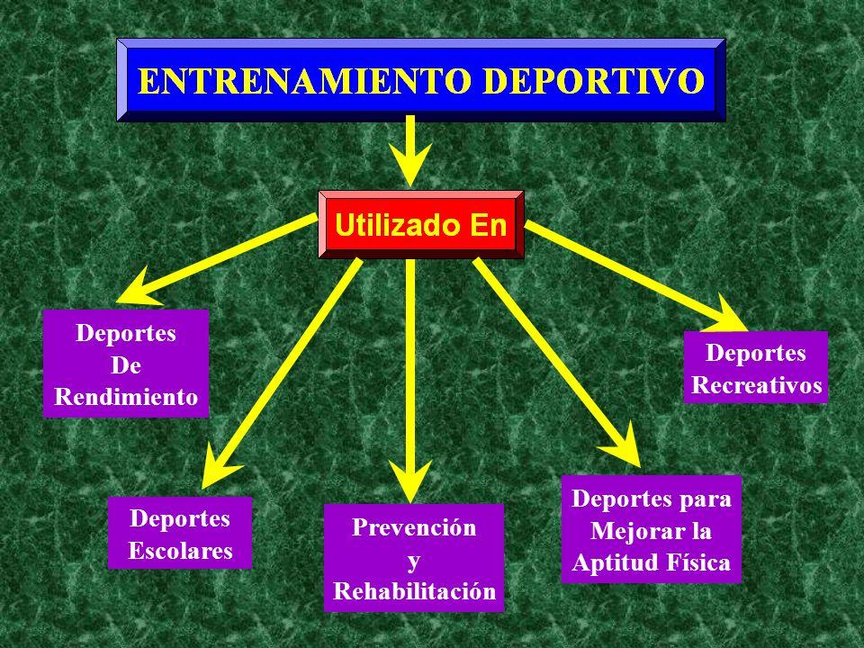DeportesDe. Rendimiento. Deportes. Recreativos. Deportes para. Mejorar la. Aptitud Física. Deportes.