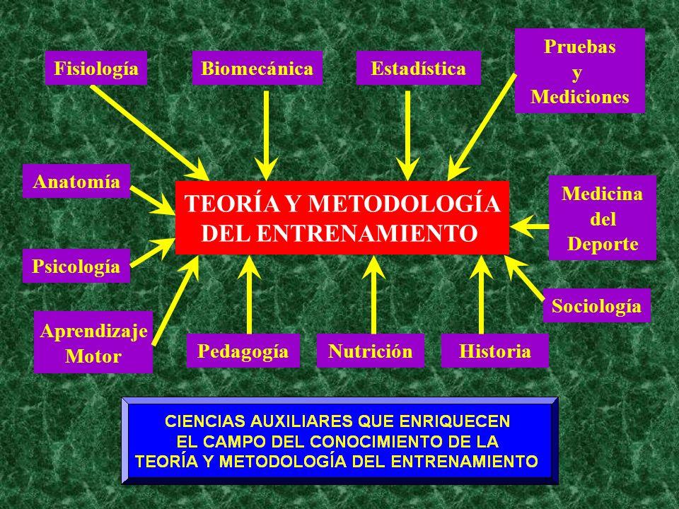 TEORÍA Y METODOLOGÍA DEL ENTRENAMIENTO
