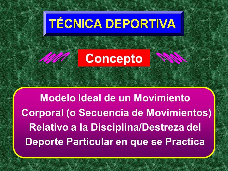 Concepto Modelo Ideal de un Movimiento