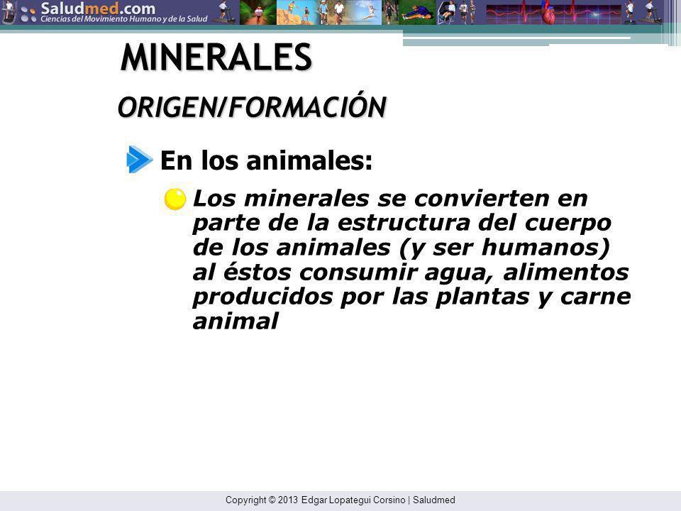 MINERALES ORIGEN/FORMACIÓN En los animales: