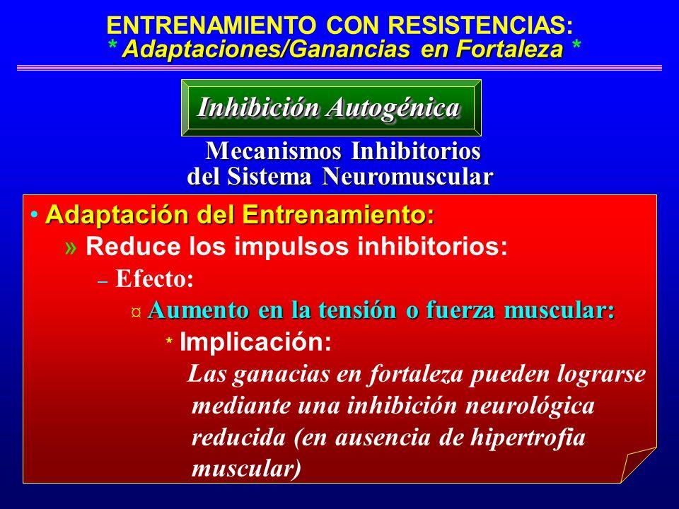 Inhibición Autogénica Mecanismos Inhibitorios