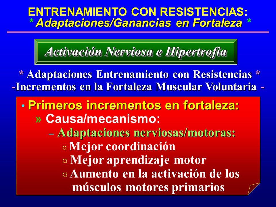 Activación Nerviosa e Hipertrofia