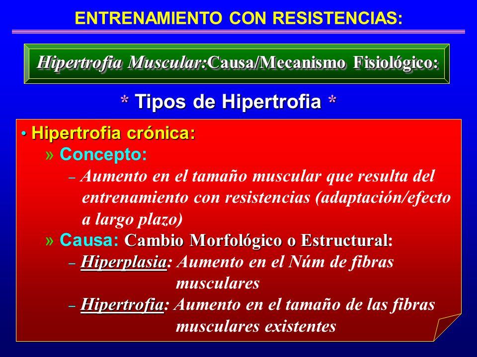 ENTRENAMIENTO CON RESISTENCIAS: * Tipos de Hipertrofia *