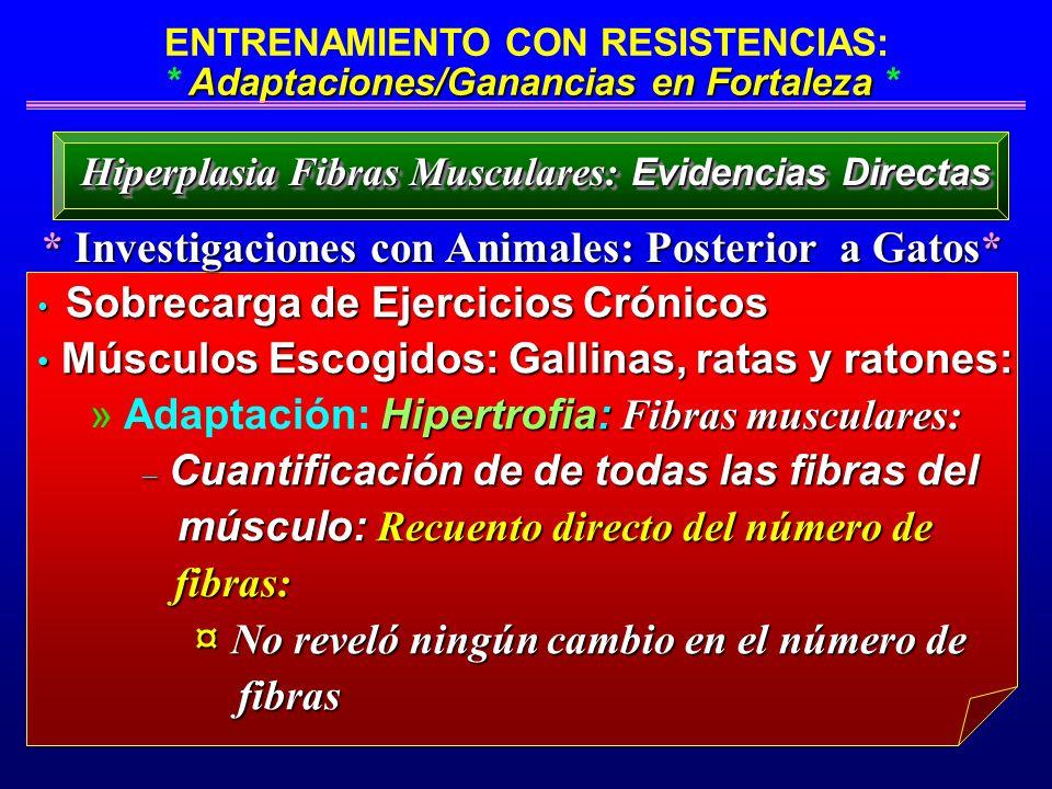 * Investigaciones con Animales: Posterior a Gatos*