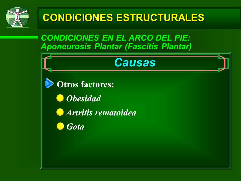 Causas CONDICIONES ESTRUCTURALES Otros factores: Obesidad
