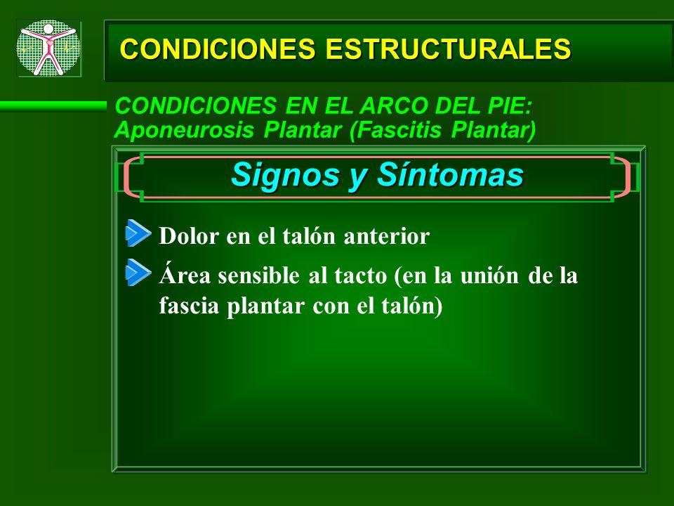 Signos y Síntomas CONDICIONES ESTRUCTURALES Dolor en el talón anterior