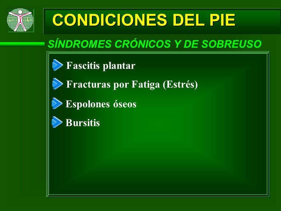 CONDICIONES DEL PIE SÍNDROMES CRÓNICOS Y DE SOBREUSO Fascitis plantar