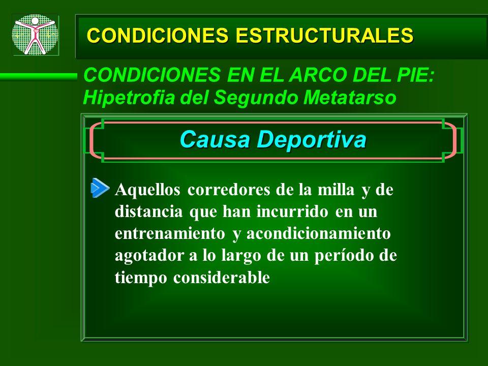 Causa Deportiva CONDICIONES ESTRUCTURALES