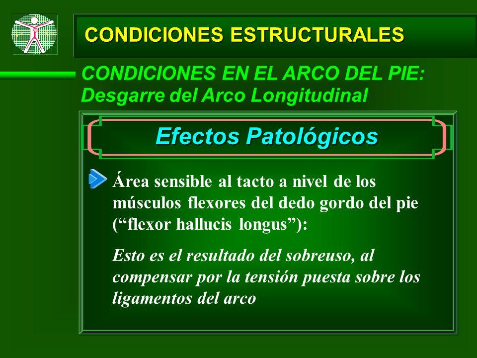 Efectos Patológicos CONDICIONES ESTRUCTURALES