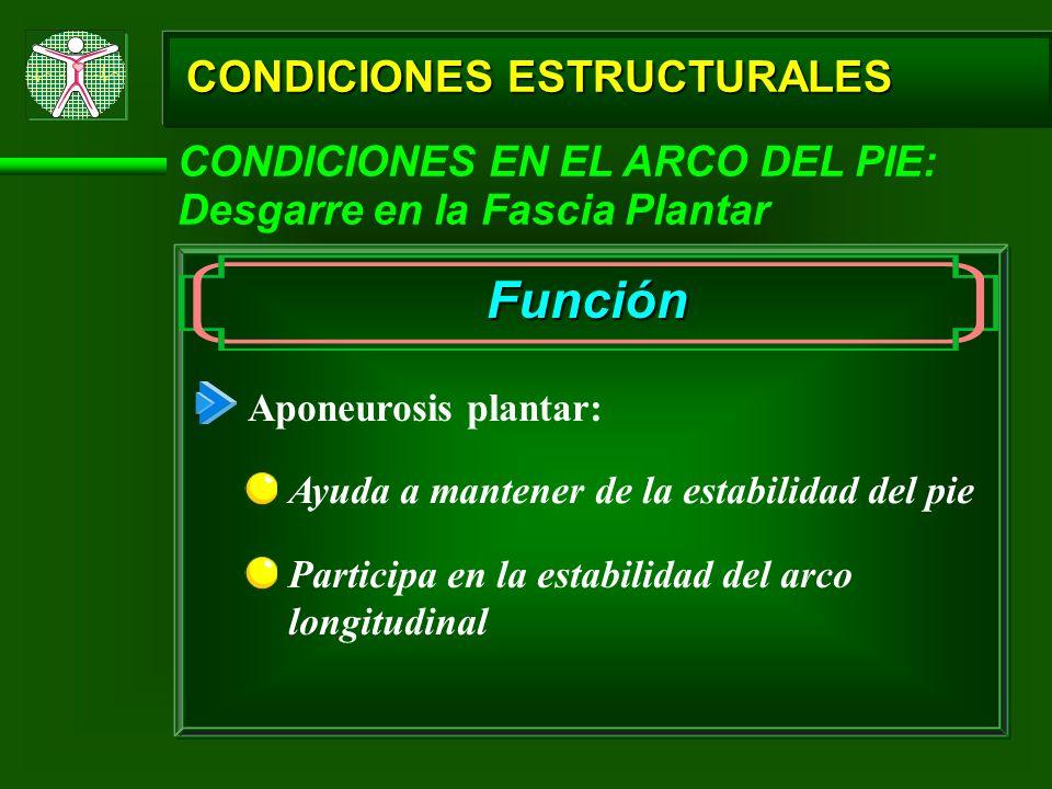 Función CONDICIONES ESTRUCTURALES